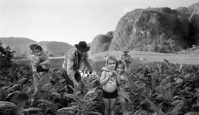 MRO_Cuba_Harvest_01