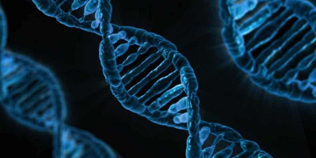 Microsoft veut faire de l'ADN le support de stockage ultime
