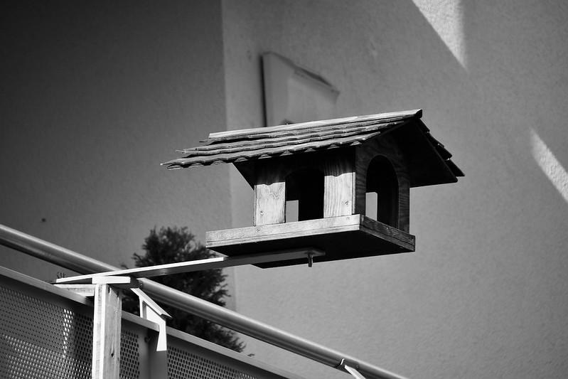 Birdhouse 19.02.2019