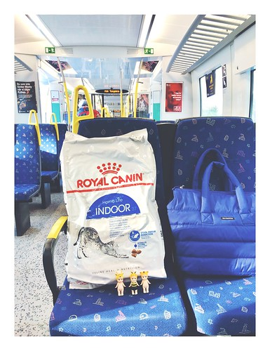 catfood and public transport, stockholm, february 2019