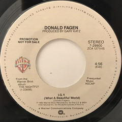 DONALD FAGEN:I.G.Y.(WHAT A BEATIFUL WORLD)(LABEL SIDE-A)