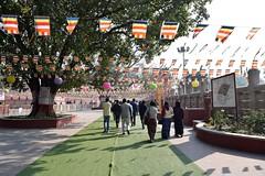 Path to Temples in Bodh Gaya