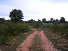 20080914 36750 1015 Jakobus Weite Hügel Steinmauer Weg Baum - Photo of Espédaillac