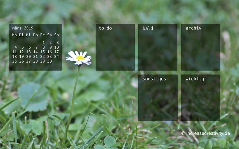 032019-gaensebluemchen-wiese-organizedDesktop-wallpaperliebe-increasecreativity