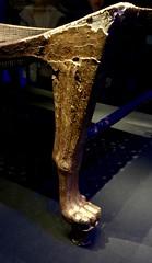 Lit en bois doré, 1336-1326 av. J.-C.
