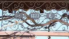 IMG_1732-signed