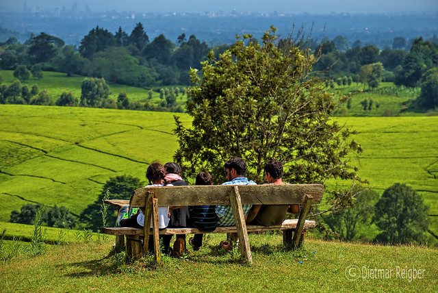 Kenya - Kiambu County - Tigoni - Family seated on a bench watching over tea fields and Nairobi Skyline