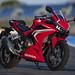 Honda CBR 500 R 2021 - 2