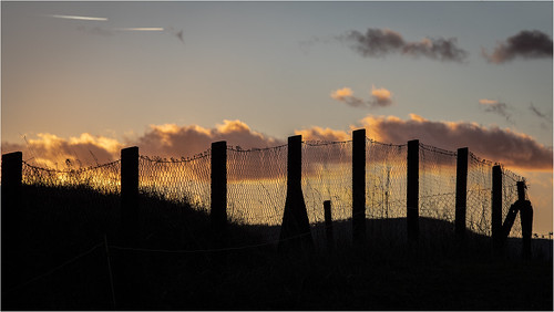 Sunset @ Fence