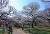 Photo:19n6554 By kimagurenote