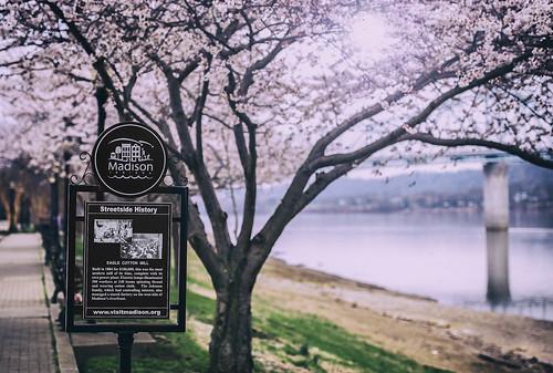 Madison Indiana River walk