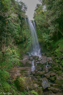 Vivian falls NZ