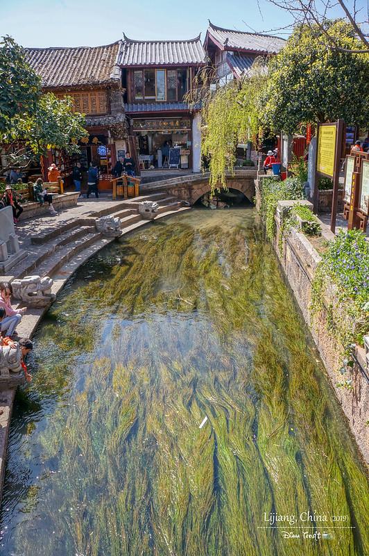 2019 China Lijiang Old Town 03