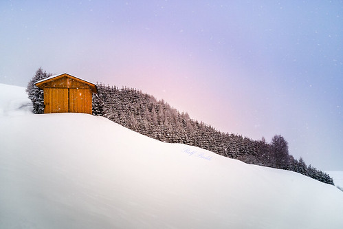 Fiss - The little hut