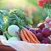 Tyler Grasham Healthy Lifestyle by TylerGrasham1