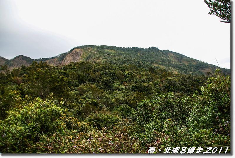 廢林道北望1349峰(馬羅寺岔路)