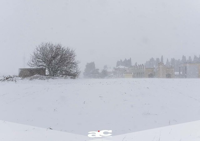 nevicate chiusura siti archeologici