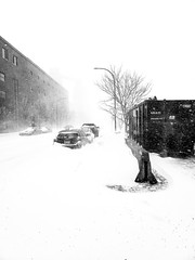 Rue saint-patrick whiteout