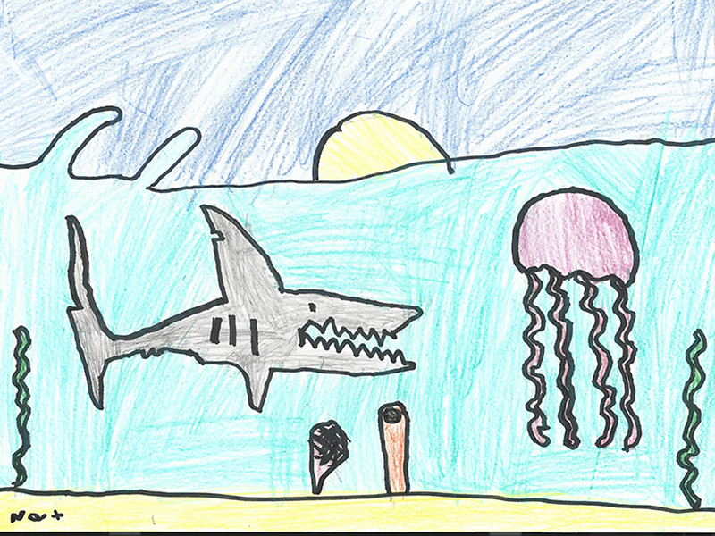 Fantastic Shark Art!