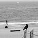 <p><a href=&quot;http://www.flickr.com/people/ale-neri/&quot;>ale neri</a> posted a photo:</p>&#xA;&#xA;<p><a href=&quot;http://www.flickr.com/photos/ale-neri/45847453855/&quot; title=&quot;San Francisco&quot;><img src=&quot;http://farm8.staticflickr.com/7898/45847453855_1118703a6e_m.jpg&quot; width=&quot;240&quot; height=&quot;160&quot; alt=&quot;San Francisco&quot; /></a></p>&#xA;&#xA;<p> <a href=&quot;http://www.aleneri.com&quot; rel=&quot;noreferrer nofollow&quot;>www.aleneri.com</a></p>