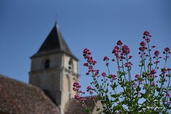 Angles-sur-L'Anglin, Vienne, Nouvelle-Aquitaine - Photo of Lurais
