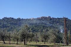 [2016-09-29] Montalcino