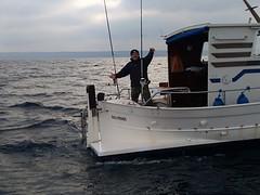 Campeonato de pesca Las Sirenas 2019