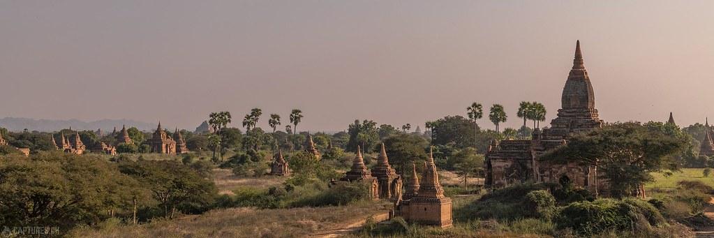 Pagoda panorama - Bagan