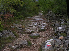 20080913 36566 1014 Jakobus Wald Weg steil Steinmauer - Photo of Livernon