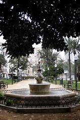 Life in Alicante