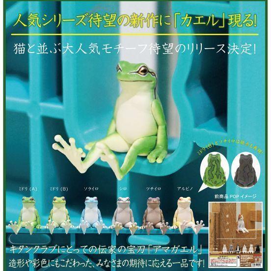 靜靜地思考著人生的青蛙~ 奇譚俱樂部【坐著的青蛙】座る蛙 情報公開!