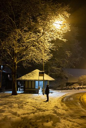 Winter in Säuliamt: Toussen (1/2)
