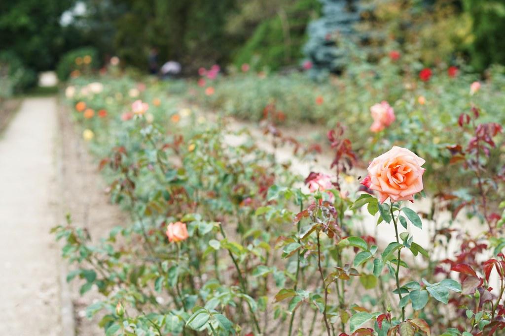 Liberec Botanical Garden_2