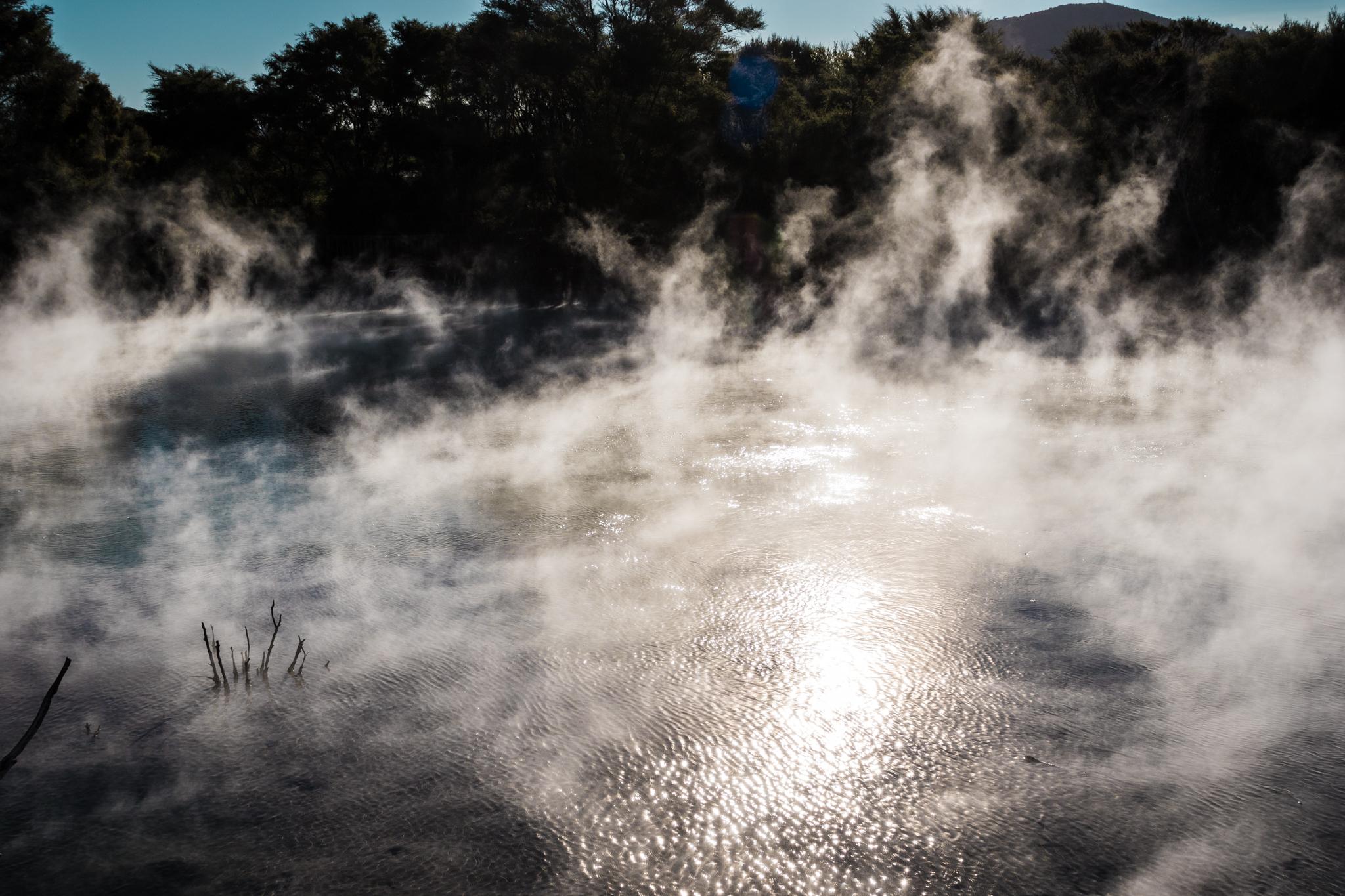 Rotorua-11