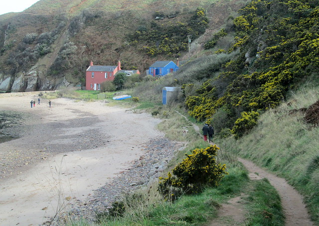 Cove, near Cockburnspath, Berwickshire, Scotland