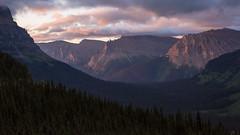 Morning Vista in Montana