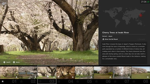 Cherry Blossoms Scapes