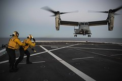 Aviation Boatswain's Mate (Handling) Airman Brian Bickmeier directs the landing of an MV-22B Osprey on the flight deck of USS New Orleans (LPD 18) during exercise Pacific Blitz. (U.S. Navy/MC2 Kelby Sanders)