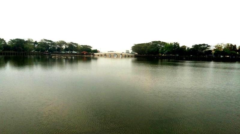 台南新營天鵝湖 (2)