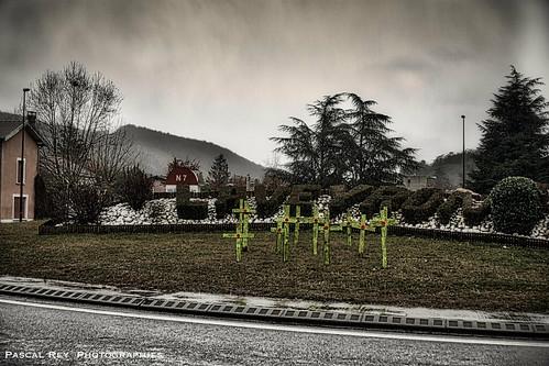 L'hiver est là, les marcheurs blancs sèment la terreur sur notre douce France.                                           DSC_6141AL