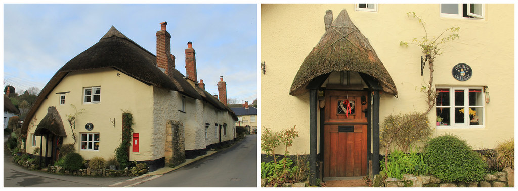 Thatched-roofed cottages, Branscombe