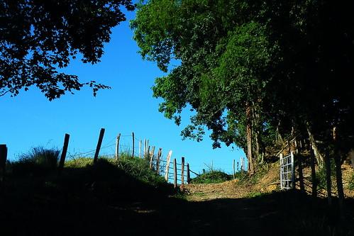 20090529 039 1108 Jakobus Weg Zaun steil Bäume