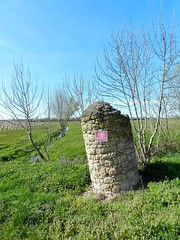 Verticalité - Photo of Saint-Estèphe
