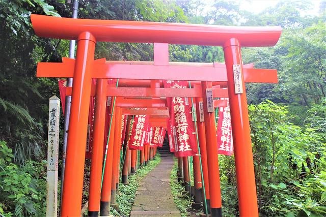 sasukeinari-gosyuin006