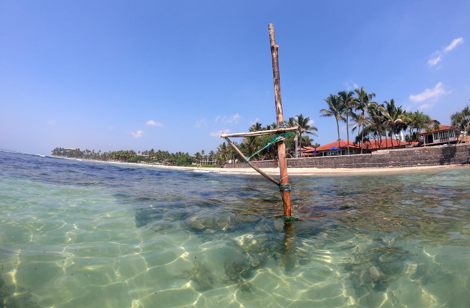 Qué hacer en Unawatuna, Sri Lanka qué hacer en unawatuna - 33260190988 51d50c0fc0 h - Qué hacer en Unawatuna, el paraíso de Sri Lanka
