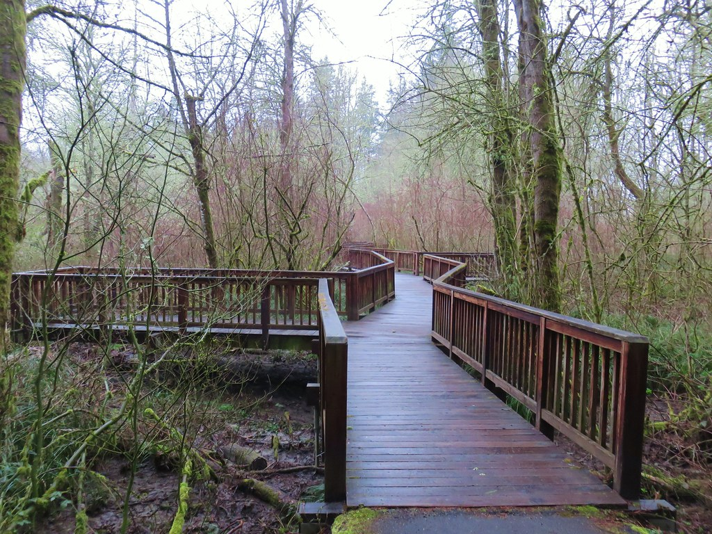 Boardwalk and viewing platforms along the Oak Trail