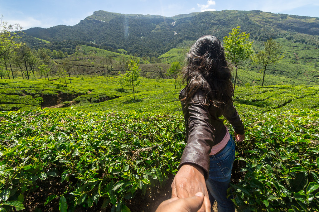 Beautiful tea estates of Munnar
