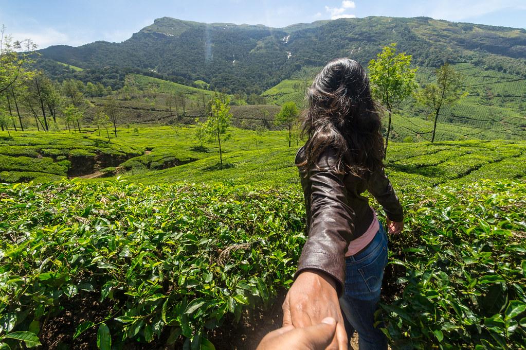Beautiful tea estates of Munnar