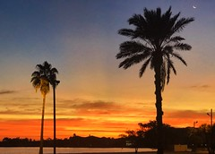 Dawn at Reddington Beach