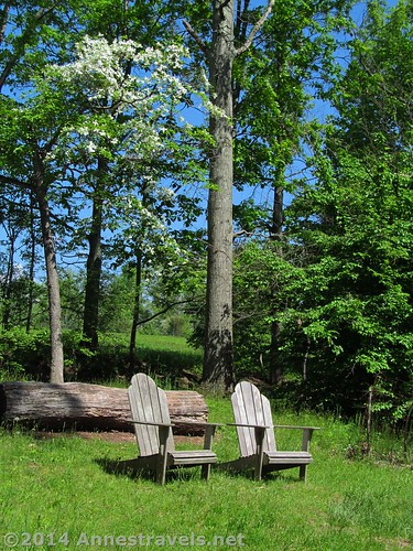 Adirondack chairs along one of the trails in the Willowwood Arboretum, Morris County, New Jersey
